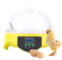 Автоматические инкубаторы для яиц, кормушки