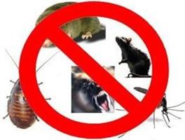Отпугиватели насекомых, грызунов, птиц и зверей